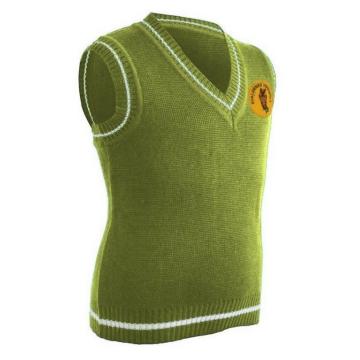 Зелёный жилет